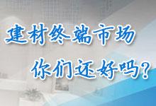 透视建材终端市场
