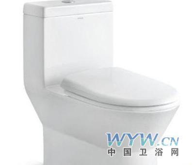 浴间的装修档次,抽水马桶