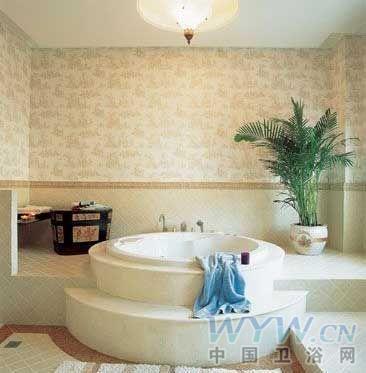 欧式贵妃浴缸的装修图